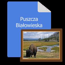 wertus pamiatki katalog pamiatek z puszczy bialowieskiej